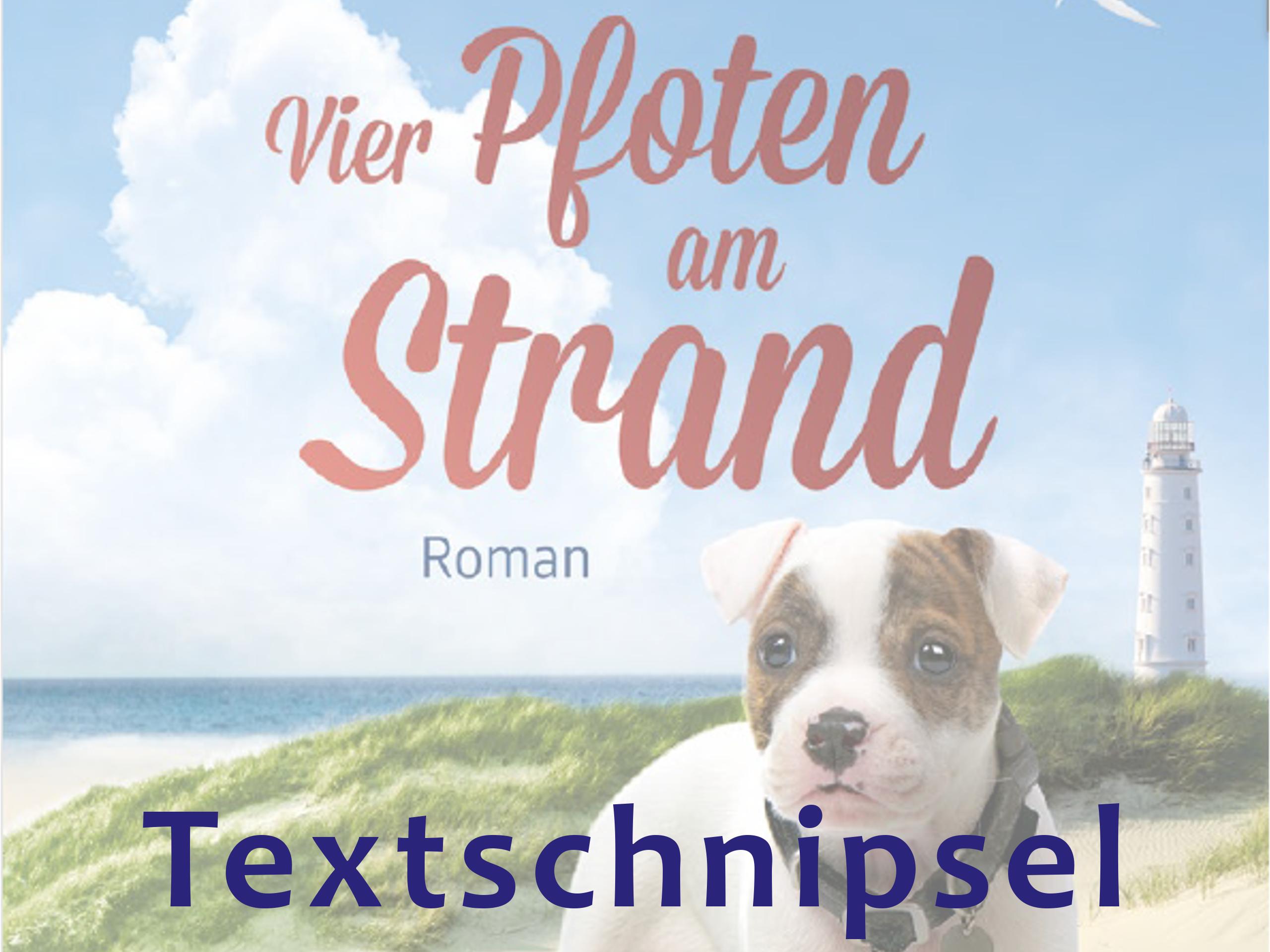 Banner Textschnipsel Vier Pfoten am Strand