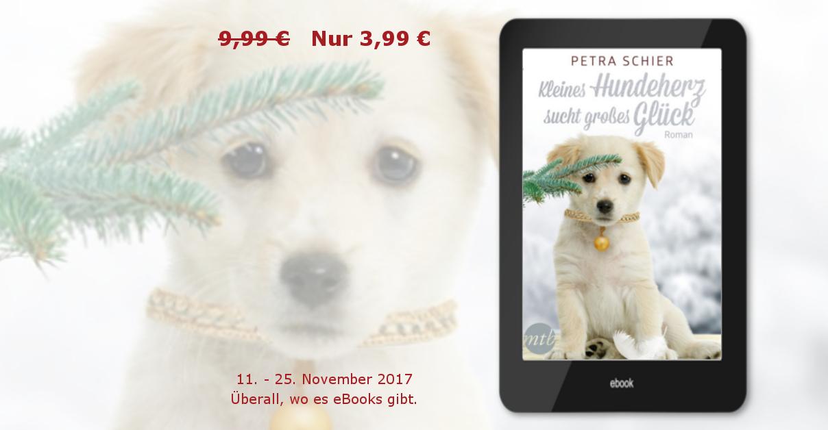 Banner Preisaktion Kleines Hundeherz sucht großes Glück November 2017