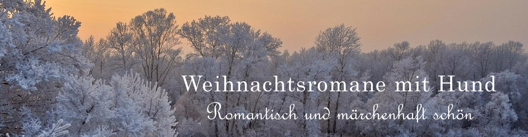 Weihnachtsromane Banner