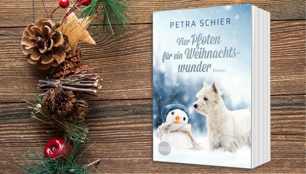Banner Vier Pfoten für ein Weihnachtswunder