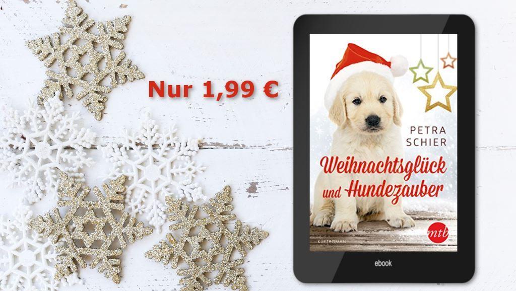 Banner Weihnachtsglück und Hundezauber Preisaktion