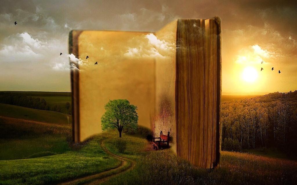 Bild Buch lesen