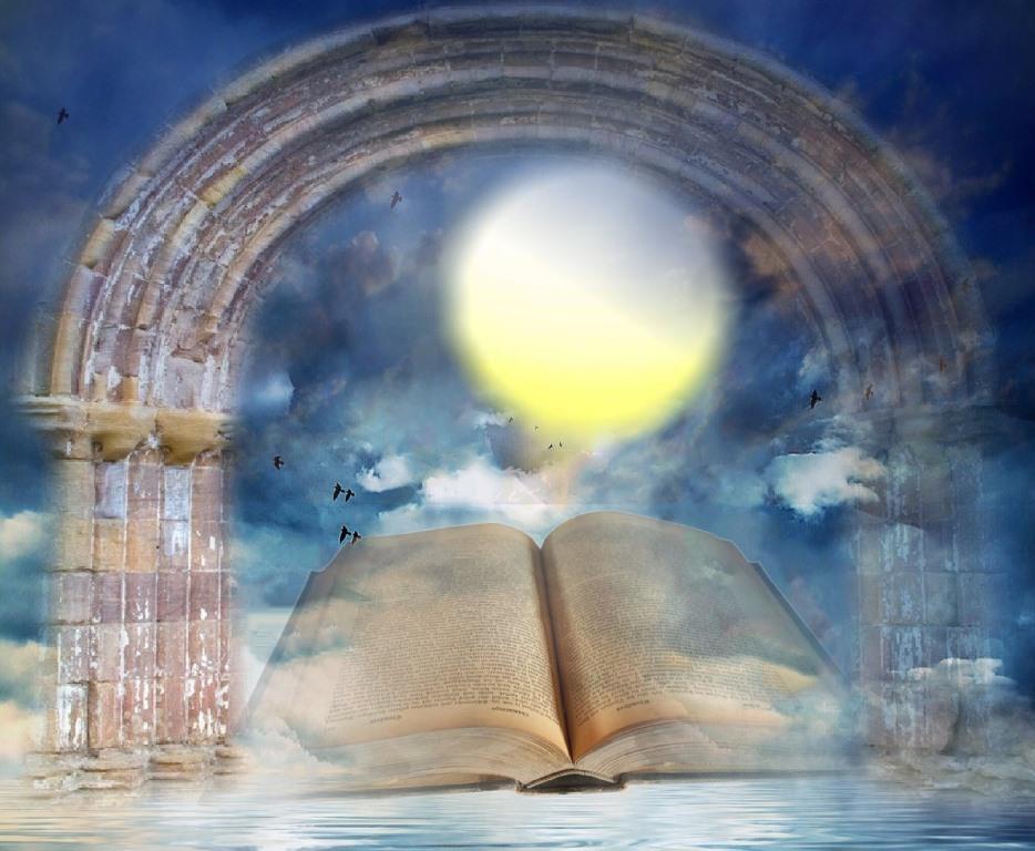 Bild Buchbogen