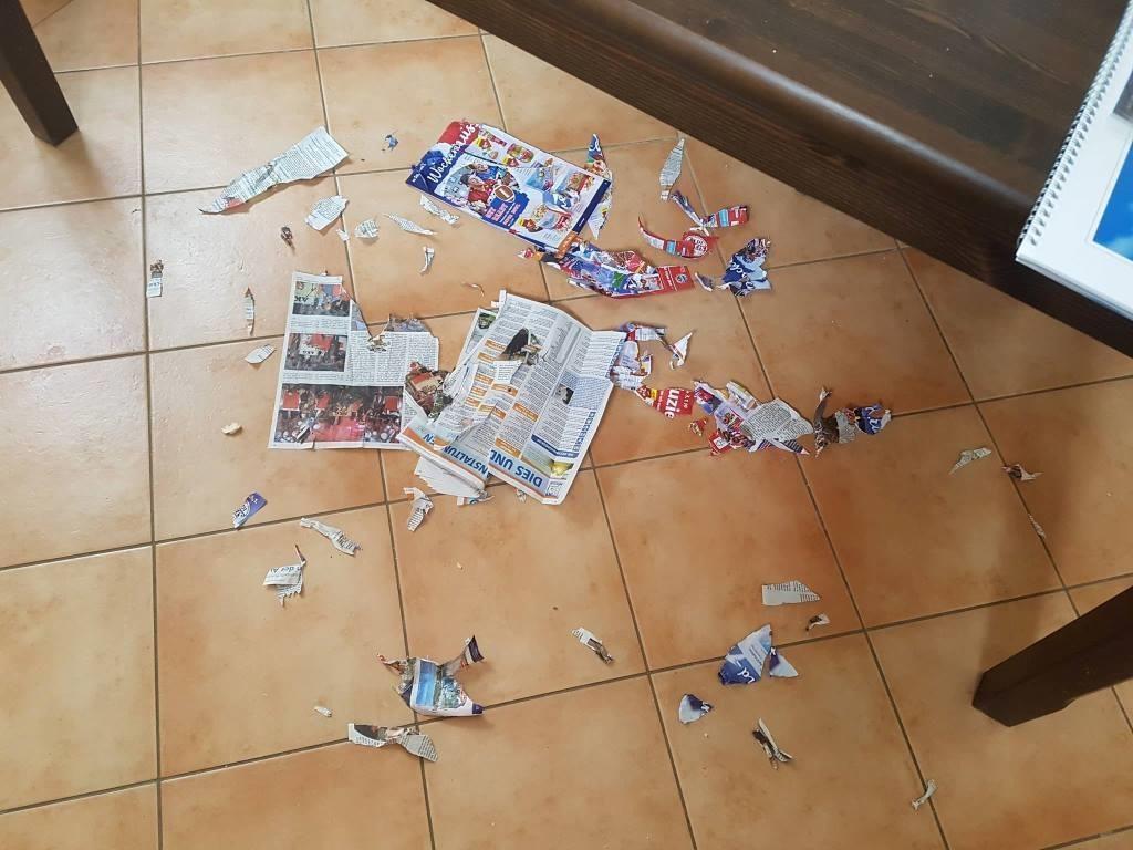 Zeitungskonfetti