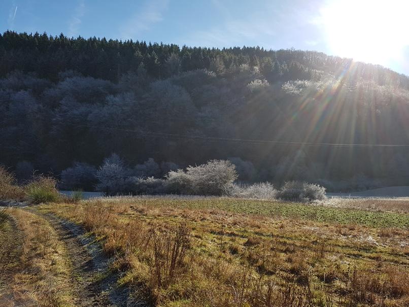 Foto Winterliche Eifellandschaft Heckenbach